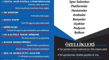 Elesteak (12)